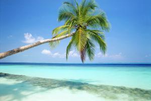 Мальдивы в декабре