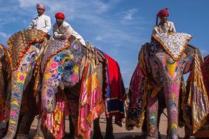 Нужна ли виза в Индию и почему туда стоит поехать