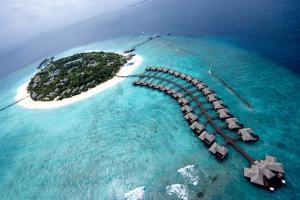 Сколько лететь до Мальдив